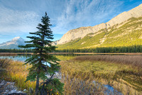 Mt. Stelfox at Sunrise from White Goat Lakes, David Thompson Country, Alberta