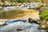 Smokies Spring: Elkmont & Little River, Tennessee