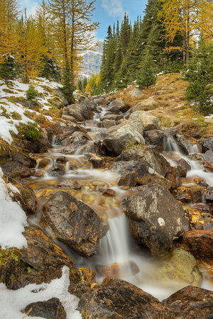 Larch Valley Outlet Stream, Banff National Park, Alberta