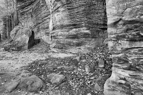 Ledges Trail Black & White, Virginia Kendall Park, Cuyahoga Valley National Park, Ohio