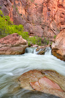 Virgin River Rapids, Riverside Walk, Zion National Park, Utah