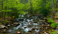 Middle Prong of the Pigeon River Pano, Greenbrier, Great Smoky Mountains National Park, Tennessee