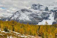 Ten Peaks from the Larch Valley, Banff National Park, Alberta