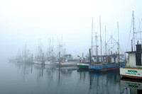 Charleston Harbor in Morning Fog, Oregon