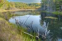 Wetland, Kennebec River Valley, Somerset County, Maine