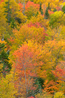 Fall Color from Square Ledge, Crawford Notch, White Mountain National Forest, New Hampshire