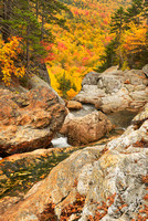 Ellis River, Pinkham Notch, White Mountain National Forest, New Hampshire