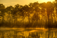 Sunrise, Long Pine Lake, Long Pine Key, Everglades National Park, Florida