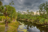 Loxahatchee River, River Bend Park, Palm Beach County, Florida