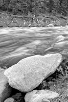 West Walker River Black & White, Humboldt-Toiyabe National Forest, California