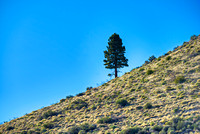 Lone Pine, Mono County, California