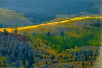 Golden Band, County Road 5, Uncompahgre National Forest, Colorado