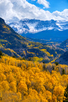 Aspen Overlook, Uncompahgre National Forest, Colorado
