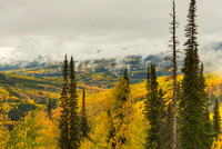 Ohio Pass Overlook, Gunnison National Forest, Colorado