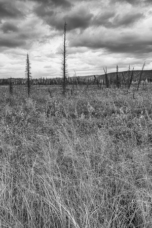 Cloudy Skies Black & White, Yukon River Crossing, Dalton Highway, Alaska