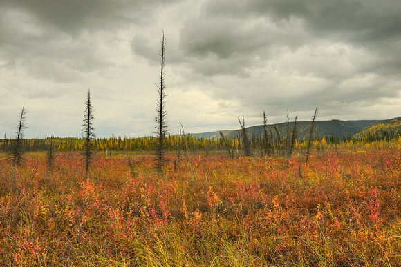 Cloudy Skies, Yukon River Crossing, Dalton Highway, Alaska