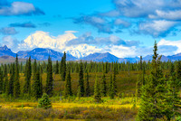 Denali View, George Parks Highway, Denali Borough, Alaska
