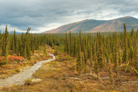 Minnie Creek, Northern Dalton Highway, Brooks Range, Alaska