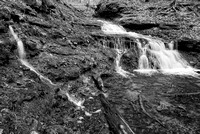 Parfrey's Glen Creek Waterfall Black & White, Parfrey's Glen State Natural Area, Wisconsin