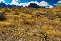 Chisos Mountains, Big Bend National Park, Texas