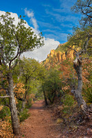 Boulder Meadow, Pinnacles Trail, Big Bend National Park, Texas