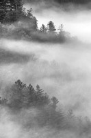 Swift Creek Overlook Misty Morning Black & White, Red River Gorge, Daniel Boone National Forest, Kentucky