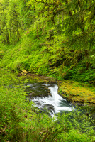 Cascades, North Fork of Silver Creek, Trail of Ten Falls, Silver Falls State Park, Orego