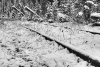 Abandoned Rail Line Black & White, Nordegg, David Thompton Country, Alberta