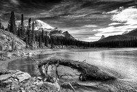 North Saskatchewan River Black & White, Glacier Lake Trail, Banff National Park, Alberta