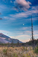 Wapta Marsh Moonrise, Yoho National Park, British Columbia
