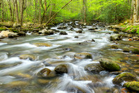 Middle Prong of the Pigeon River, Greenbrier, Great Smoky Mountains National Park, Tennessee