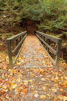 Ledges Trail, Virginia Kendall Park, Cuyahoga Valley National Park, Ohio