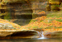 Illinois Canyon, Starved Rock State Park, Illinois