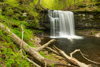 Harrison Wright Falls, Ricketts Glen State Park, Pennsylvania