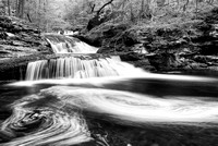 Waters Meet Black & White, Ricketts Glen State Park, Pennsylvania
