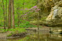 Illinois Canyon in Spring, Starved Rock State Park, Illinois