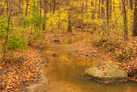 Camp Creek in Late Autumn, Fort Harrison State Park, Indiana