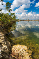 Pine Glades Lake, Everglades National Park, Florida