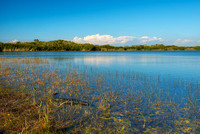 Nine Mile Pond, Everglades National Park, Florida