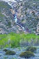 Mountain Cascade, June Lake Loop, Inyo National Forest, California