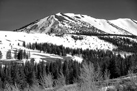 Snowy Slopes Black & White, Virginia Lakes Road, Humboldt-Toiyabe National Forest, California