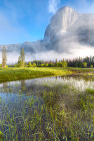 El Capitan in Mist from El Capitan Meadow, Yosemite National Park, California