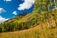 Meadow, Bear Creek Trail, Uncompahgre National Forest, Colorado