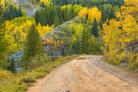 Old Lime Creek Road, San Juan National Forest, Colorado