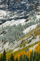 Snowy Red Mountain Pass, Uncompahgre National Forest, Colorado