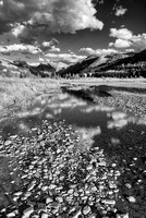 San Miguel River Black & White, Telluride Valley Floor, San Miguel County, Colorado