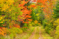 Rural Road, Orleans County, Vermont