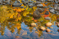 Wild River Reflections, Evans Notch, White Mountain National Forest, Maine