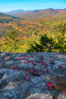 The Roost, Evans Notch, White Mountain National Forest, Maine