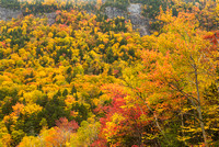 Fall Color, Silver Cascades, Crawford Notch State Park, New Hampshire